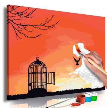 Pictatul pentru recreere - Open Cage