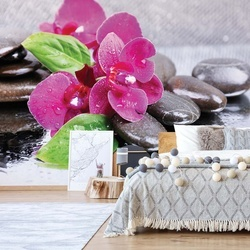 Pink Orchids Spa Pebbles Photo Wallpaper Wall Mural