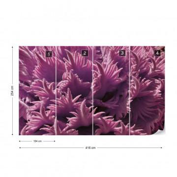 Pink Organic Texture Photo Wallpaper Wall Mural
