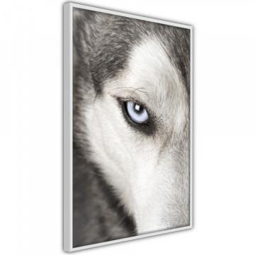 Poster - Azure Eye