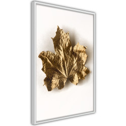 Poster - Dried Maple Leaf