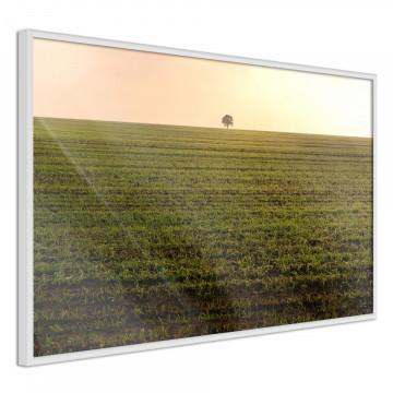 Poster - Farmland