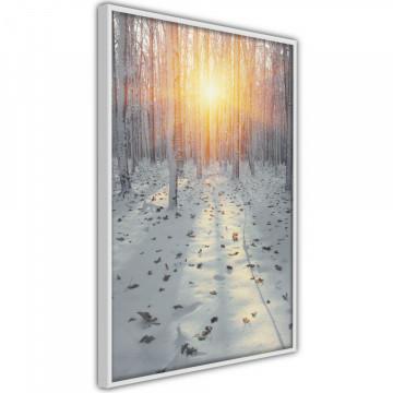 Poster - Frosty Sunset
