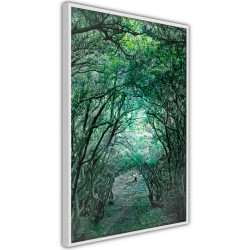 Poster - Tree Tunnel