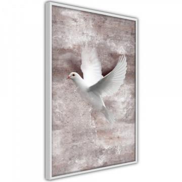 Poster - White Dreams