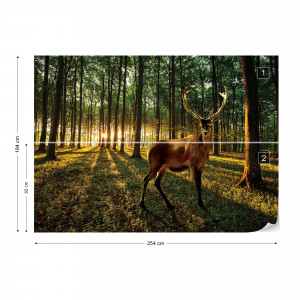 Stag In The Forest Sunrise Photo Wallpaper Wall Mural