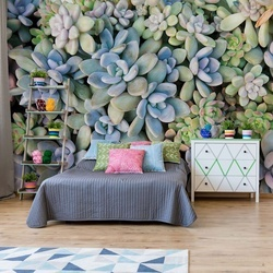 Succulent Plants Texture Photo Wallpaper Wall Mural