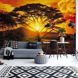 Sunset Africa Nature Tree Photo Wallpaper Wall Mural