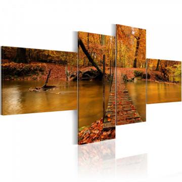 Tablou - A footbridge over a forest stream