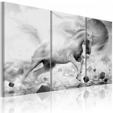Tablou - A unicorn on the edge of the world