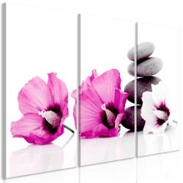 Tablou - Calm Mallow (3 Parts) Pink