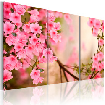 Tablou - Cherry flower