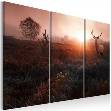 Tablou - Deer in the Sunshine I