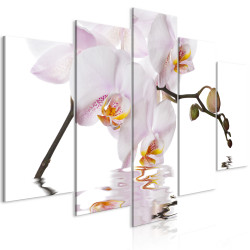 Tablou - Delightful Orchid (5 Parts) Wide