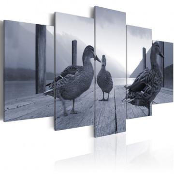 Tablou - Ducks on a pier