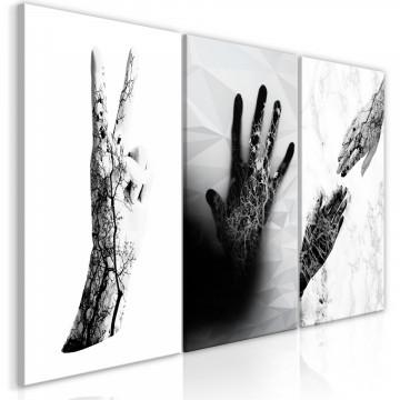 Tablou - Female Hands (3 Parts)