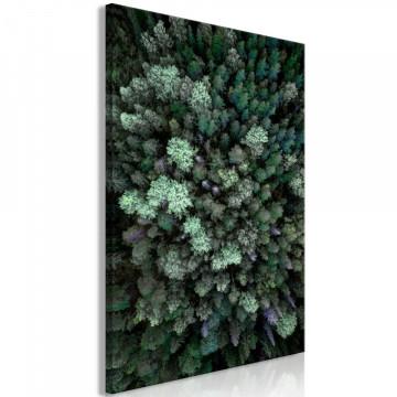 Tablou - Flying Over Forest (1 Part) Vertical