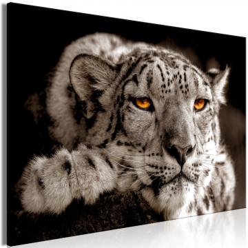 Tablou - Magic Eyes (1 Part) Wide