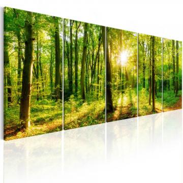 Tablou - Magic Forest