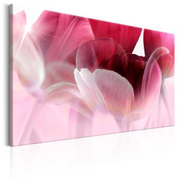 Tablou - Nature: Pink Tulips