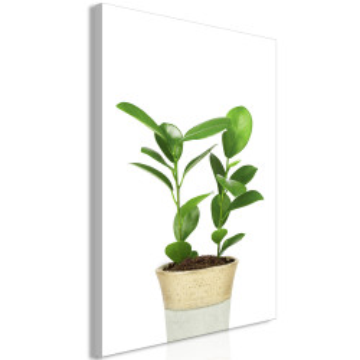 Tablou - Plant In Pot (1 Part) Vertical