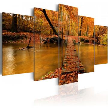 Tablou - Redness of autumn