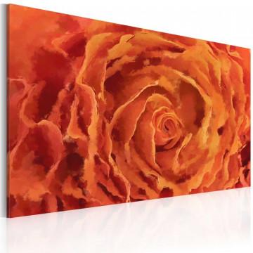 Tablou - Rose in orange