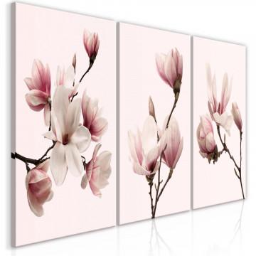 Tablou - Spring Magnolias (3 Parts)