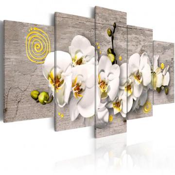 Tablou - Sunny orchids - 5 pieces