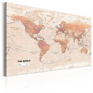 Tablou - World Map: Orange World