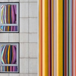 The Gray And The Colors Photo Wallpaper Mural