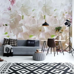 White Flowers Photo Wallpaper Wall Mural
