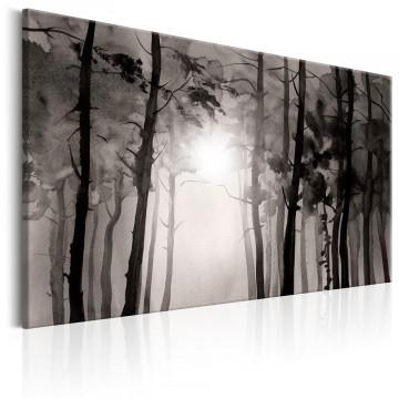 Tablou - Foggy Forest