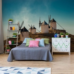 Consuegra Photo Wallpaper Mural