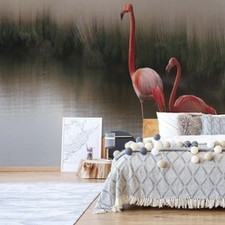 Flamingos On The Lake Photo Wallpaper Mural