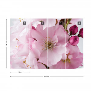 Flowers Cherry Blossom Pink Photo Wallpaper Wall Mural