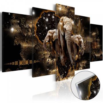 Imagine pe sticlă acrilică - Brown Elephants [Glass]