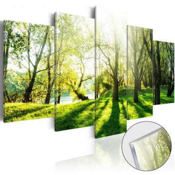 Imagine pe sticlă acrilică - Green Glade [Glass]