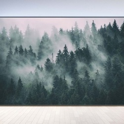Penthouse View Misty Forests