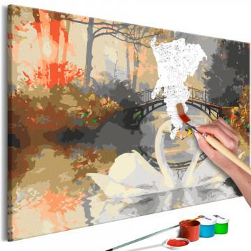Pictatul pentru recreere - Swan Love