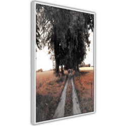 Poster - Field Path