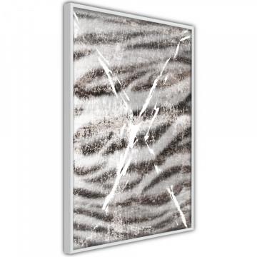 Poster - Predator Skin