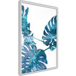 Poster - Sapphire Monstera