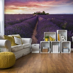 Summer At Valensole Photo Wallpaper Mural