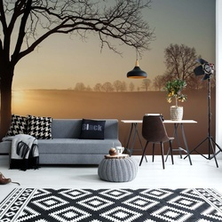 Sunrise Photo Wallpaper Mural