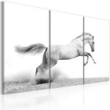 Tablou - A galloping horse