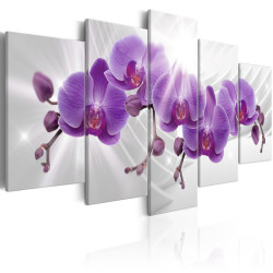Tablou - Abstract Garden: Purple Orchis