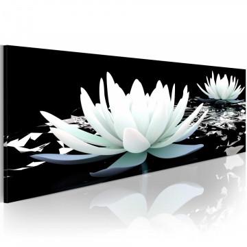 Tablou - Alabaster lilies