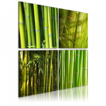 Tablou - Bamboos