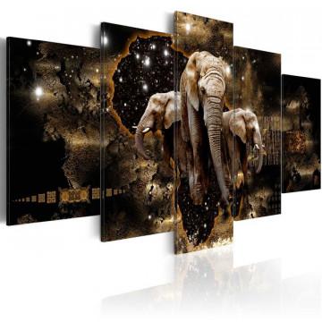 Tablou - Brown Elephants